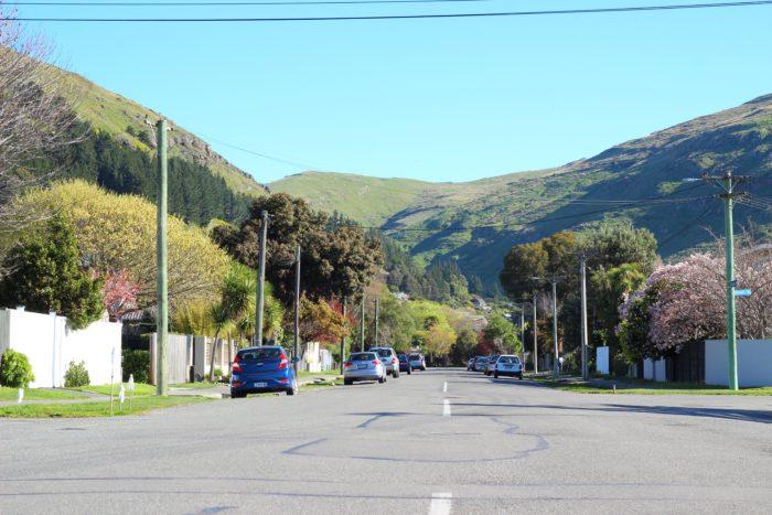 ニュージーランドの田舎の風景